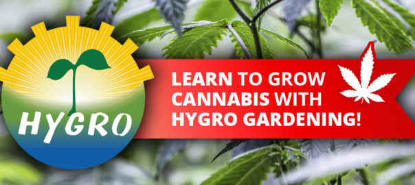 learn to grow Cannabis with Hygro Gardening in Campbell River